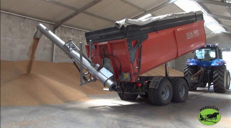 Snec transfer cereale POM T213